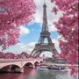 A voyage in Paris 3  miraculous ladybug stories