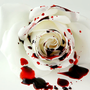 The White Rose stories