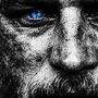 The Warrior  adversity stories